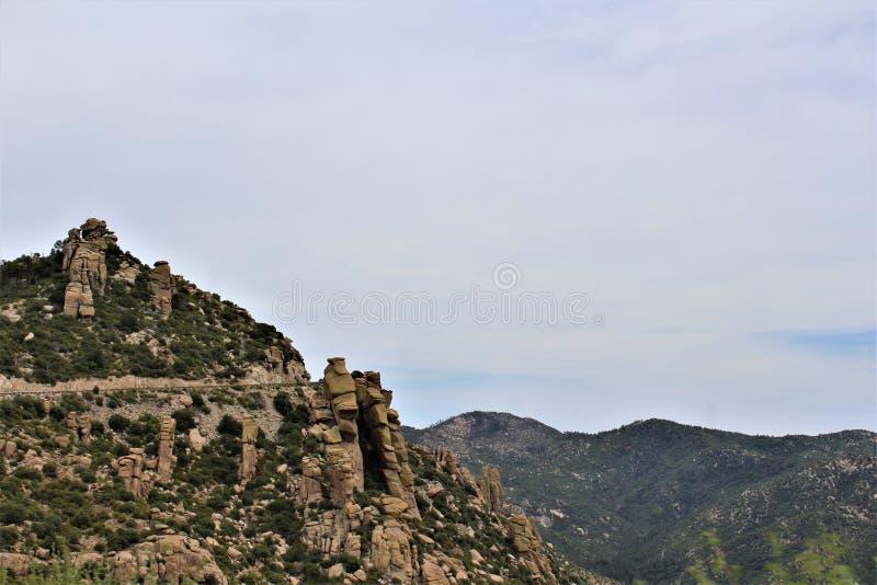 Montagem Lemmon, Santa Catalina Mountains, floresta nacional de Coronado, Tucson, o Arizona, Estados Unidos fotos de stock