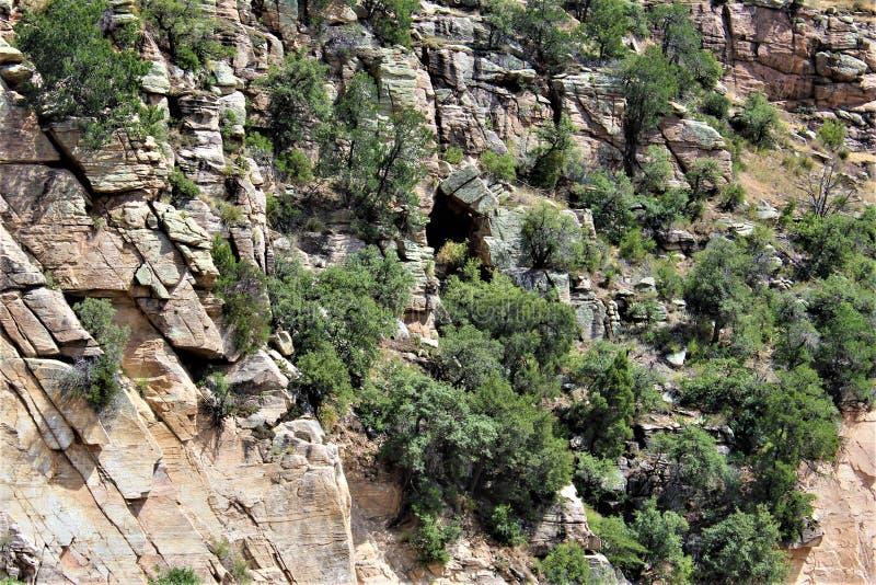 Montagem Lemmon, Santa Catalina Mountains, floresta nacional de Coronado, Tucson, o Arizona, Estados Unidos imagem de stock royalty free