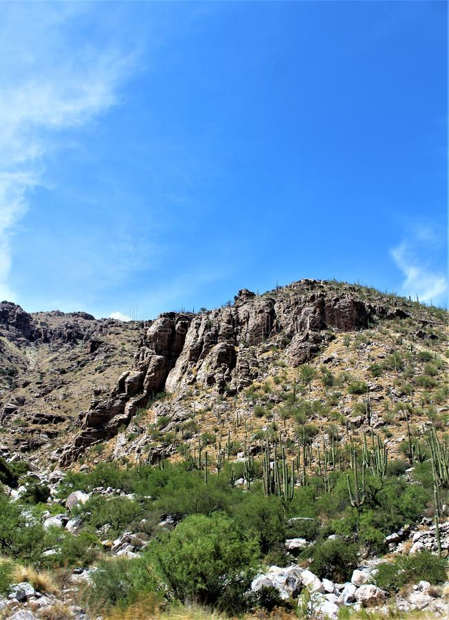 Montagem Lemmon, Santa Catalina Mountains, floresta nacional de Coronado, Tucson, o Arizona, Estados Unidos foto de stock royalty free