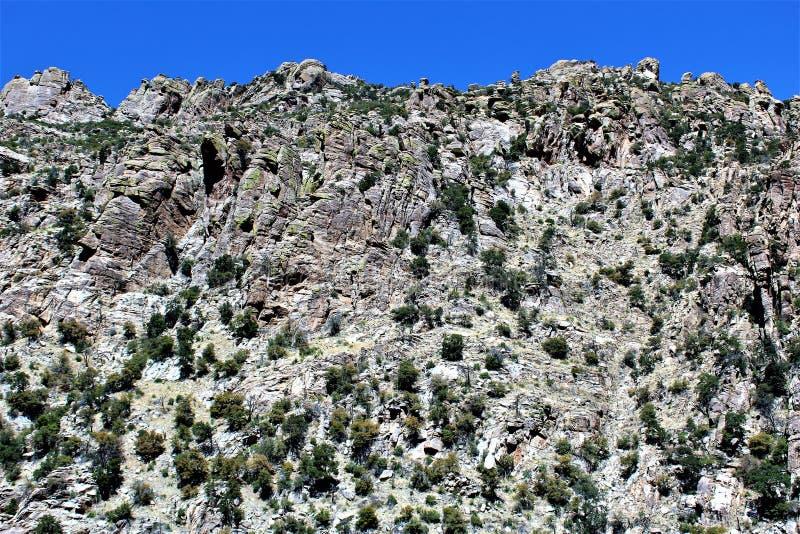 Montagem Lemmon, Tucson, o Arizona, Estados Unidos fotografia de stock