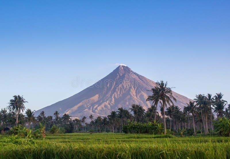 Montagem Mayon de Vulcano nas Filipinas fotos de stock