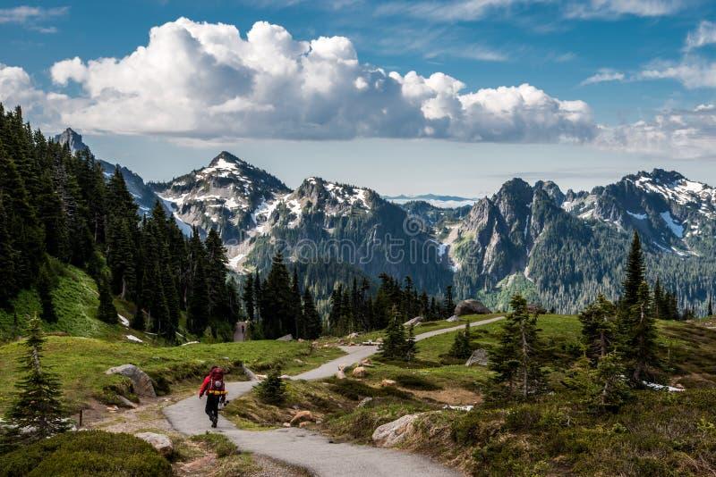 Montagem Rainier Vista imagens de stock royalty free