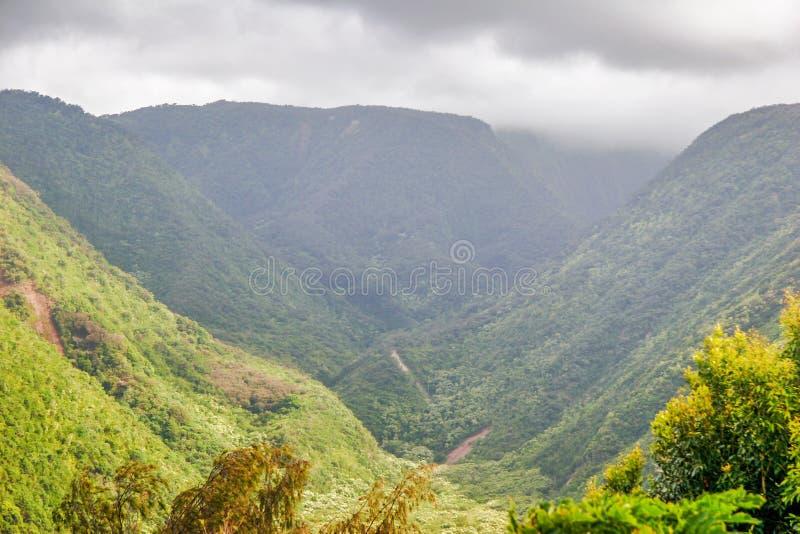 Montagens e selva no tempo nevoento. Havaí. imagens de stock
