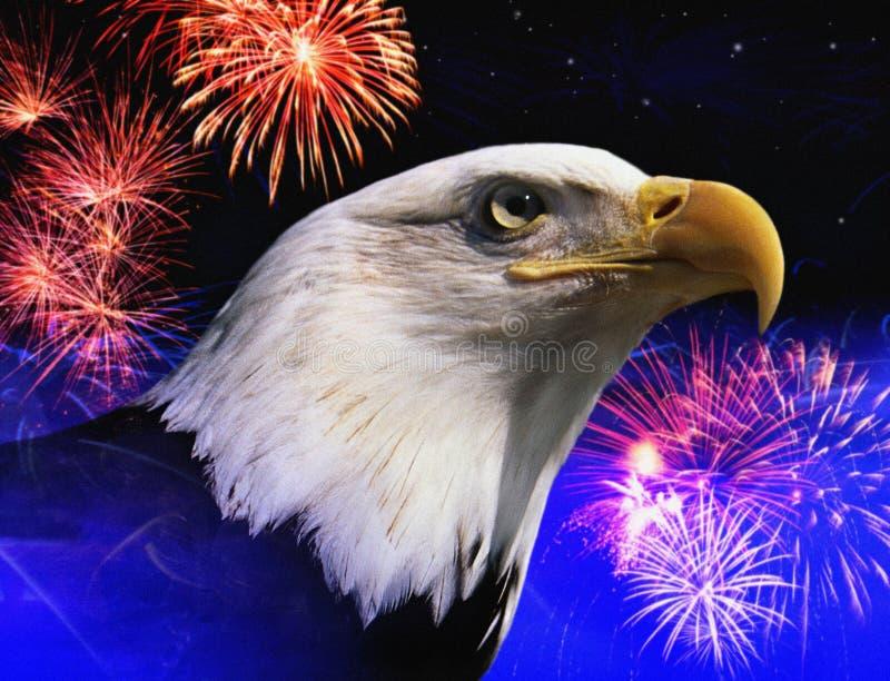 Montaggio della foto: Aquila calva e fuochi d'artificio americani fotografia stock libera da diritti