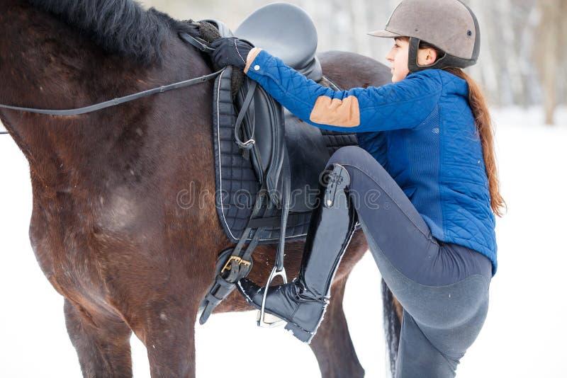 Montaggio della ragazza sul suo cavallo di baia per guidare fotografia stock libera da diritti