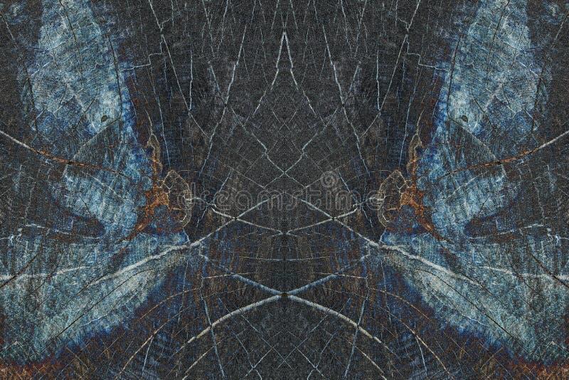 Montaggio di immagine di specchio del tronco di albero tagliato fotografia stock