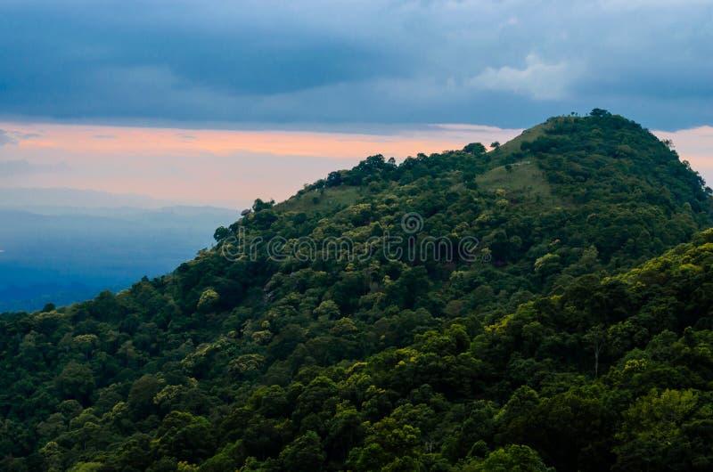 Download Montagna immagine stock. Immagine di bello, renda, bellezza - 55365805