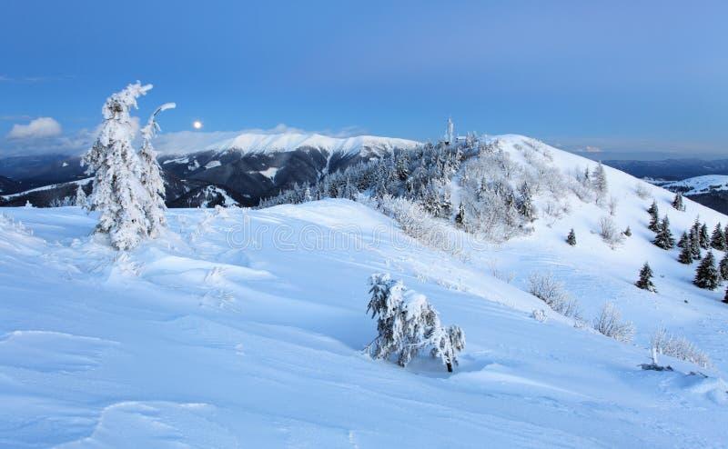 Montagna all'inverno, Slovacchia della foresta immagine stock libera da diritti