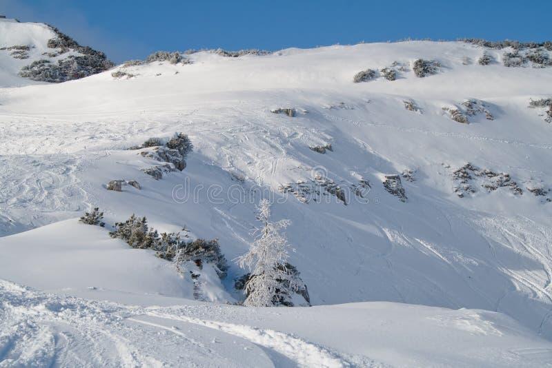 Montagna alpina immagini stock