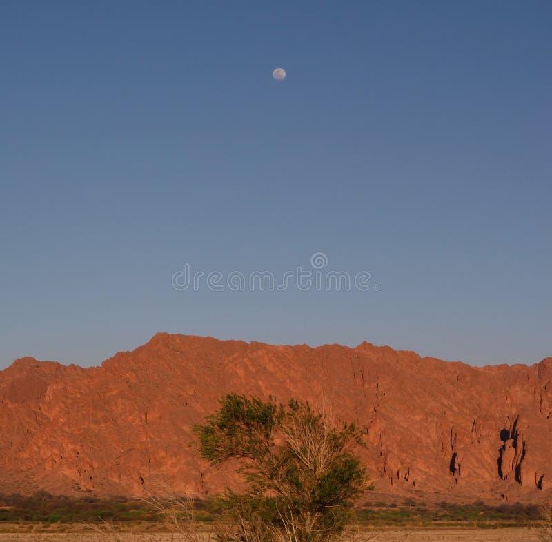 Montagna arancio sola della luna al crepuscolo - fotografia stock libera da diritti