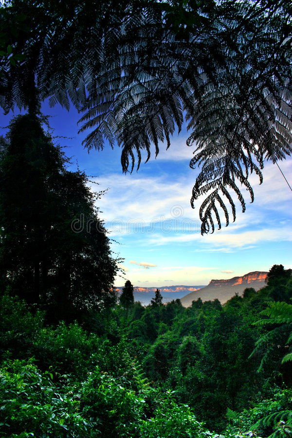 Montagna blu, NSW, Australia immagine stock