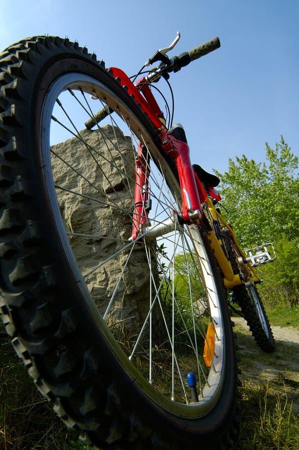 Montagna che Biking angolo basso fotografia stock libera da diritti