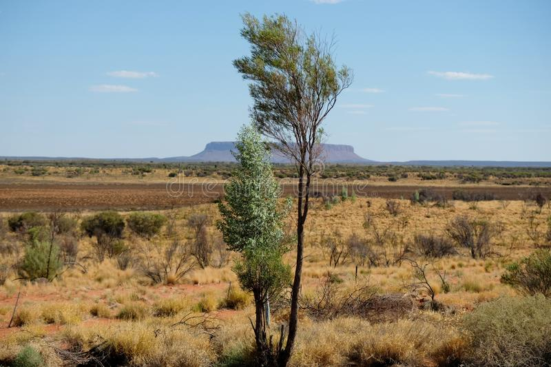 Montagna Conner del piano d'appoggio nell'entroterra sull'orizzonte, giorno soleggiato in Territorio del Nord Australia immagini stock libere da diritti
