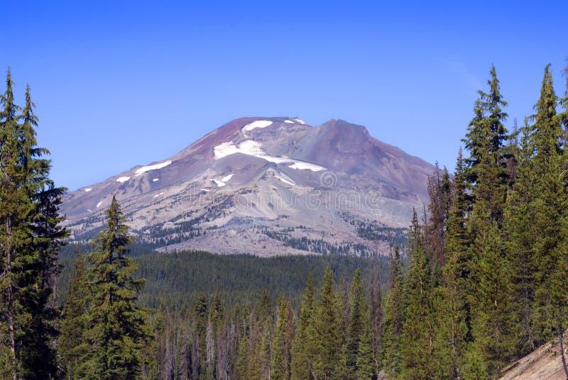 Montagna del sud della sorella attraverso gli alberi fotografia stock
