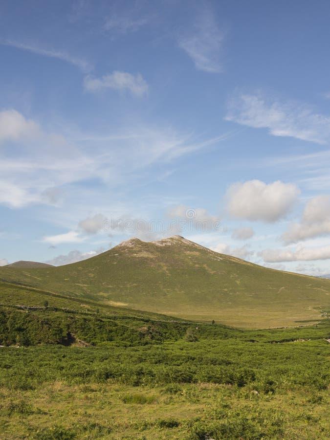 Montagna della gallina nel Mournes Irlanda fotografia stock libera da diritti