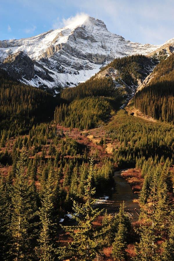 Download Montagna della neve immagine stock. Immagine di foresta - 7318623