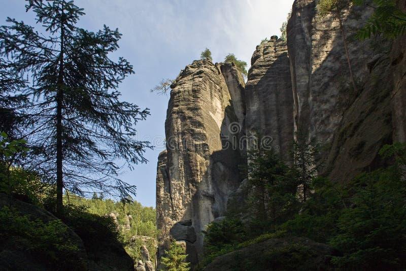 Montagna della roccia in foresta verde immagine stock libera da diritti
