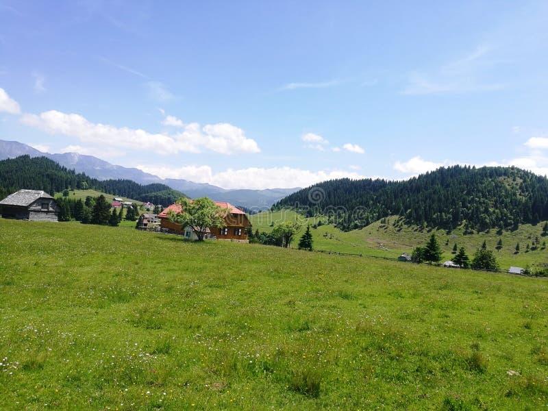 Montagna della Romania immagini stock libere da diritti