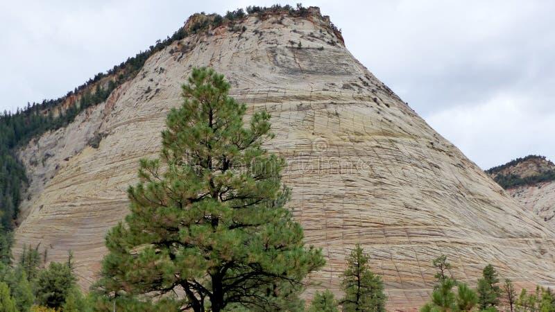 Montagna della Tabella nell'Utah, Stati Uniti fotografia stock libera da diritti