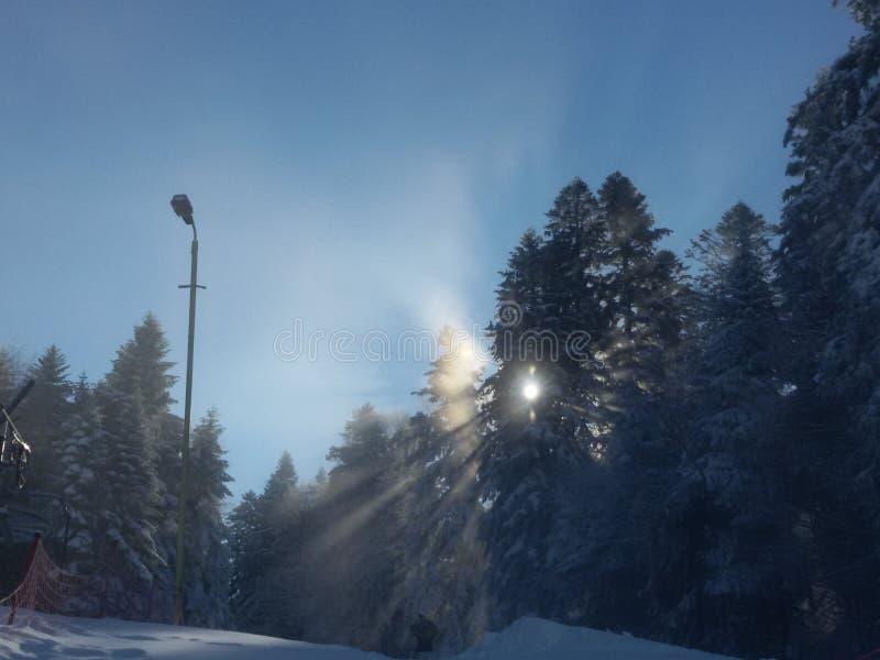 Montagna di alba fotografia stock