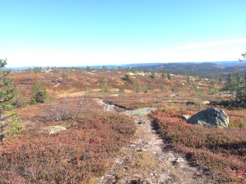 Montagna di autunno fotografie stock