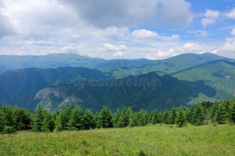 Montagna di estate fotografie stock
