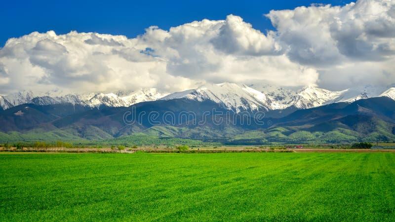 Montagna di Fagaras in Romania, in primavera con le montagne nei precedenti fotografie stock
