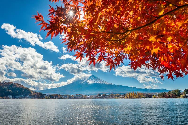 Montagna di Fuji e di Autumn Season nel lago Kawaguchiko, Giappone immagini stock libere da diritti