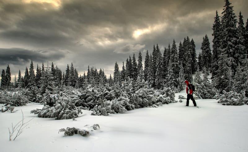 Montagna di inverno immagine stock libera da diritti