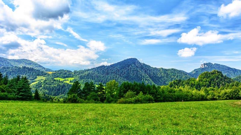 montagna di paesaggio pittoresca fotografia stock libera da diritti