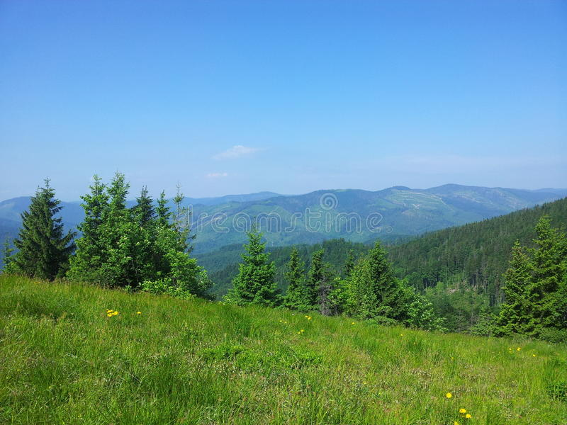 Montagna di Parashka, montagne Carpathians fotografia stock libera da diritti