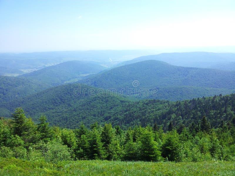 Montagna di Parashka, montagne Carpathians immagine stock libera da diritti