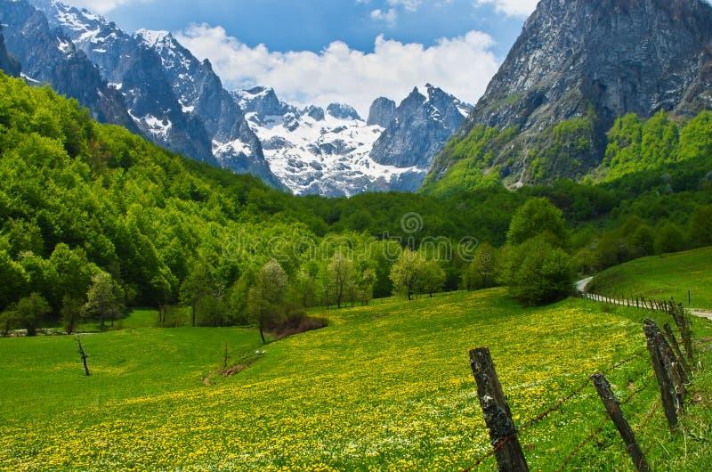 Montagna di Prokletije, Montenegro immagini stock libere da diritti