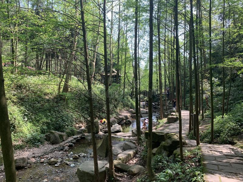 Montagna di Qingcheng fotografia stock libera da diritti