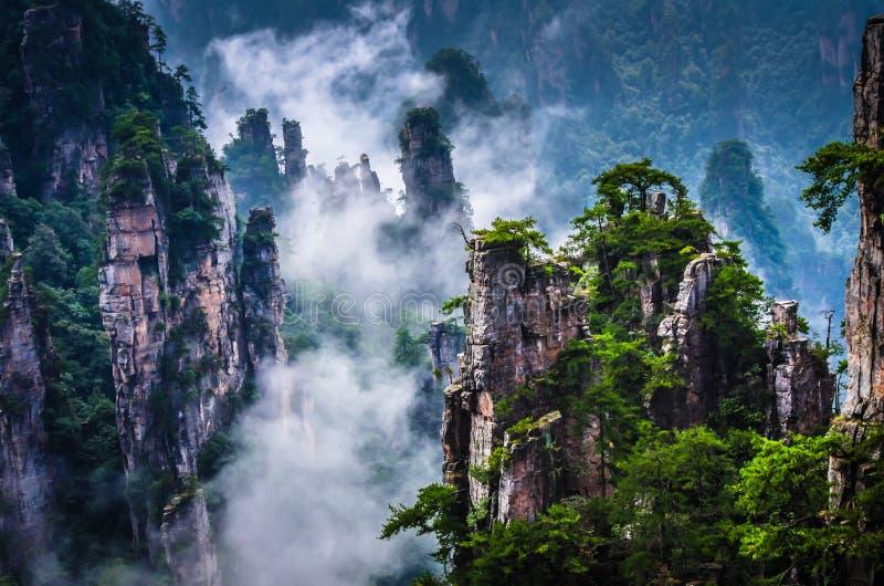 Montagna di Tianzi, Zhangjiajie Wulingyuan in Cina immagine stock libera da diritti