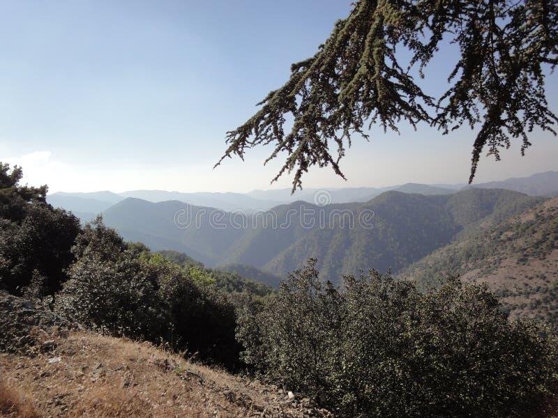 Montagna di Troodos fotografia stock