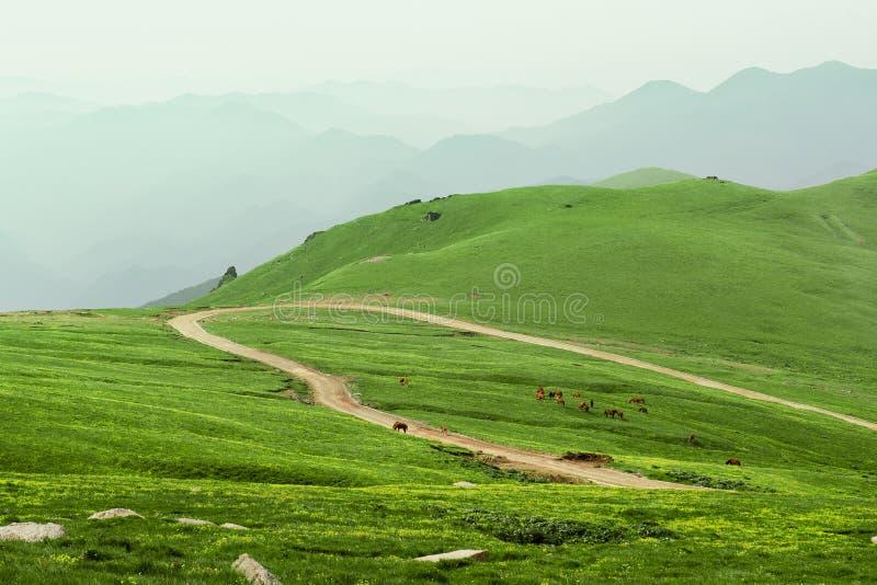 Montagna di WuTai immagini stock