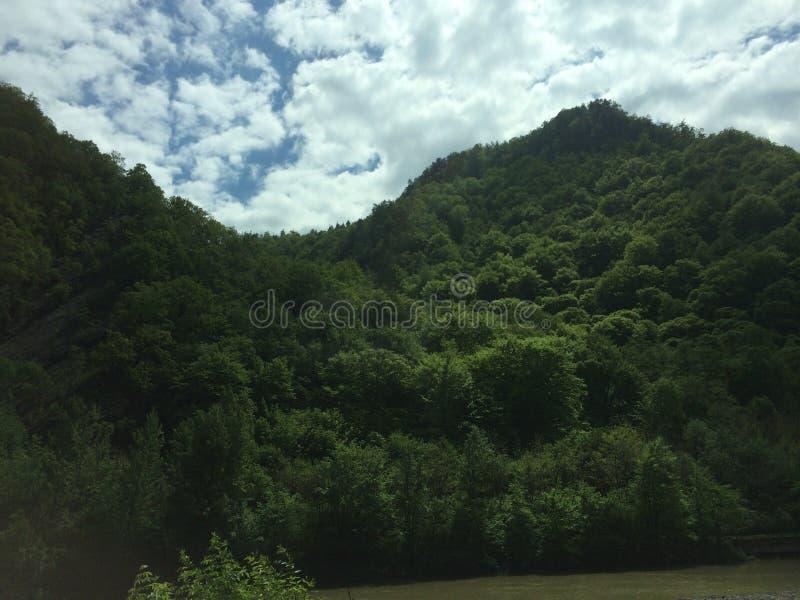 Montagna e cielo boscosi immagine stock libera da diritti