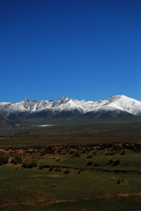 Montagna e pascolo della neve fotografia stock libera da diritti