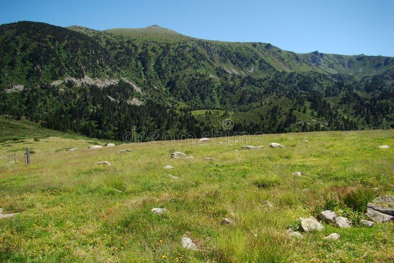 Montagna e prato in Pirenei immagini stock