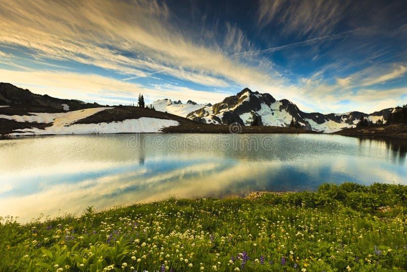 Montagna e Wildflowers immagini stock