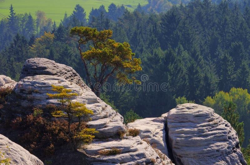 Montagna Gamrig di vista immagine stock