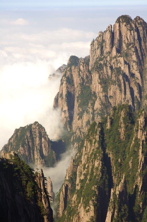 Montagna gialla immagine stock
