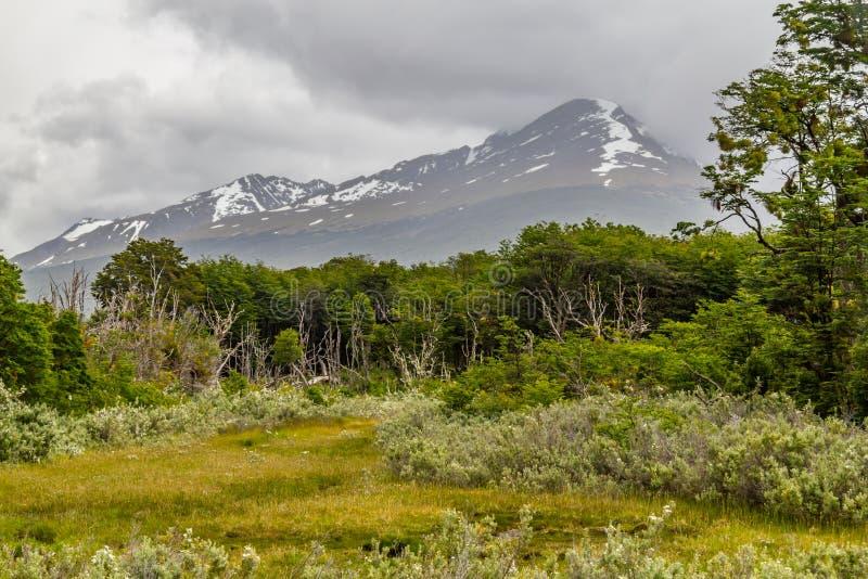 Montagna nella baia di Lapataia, Tierra del Fuego National Park immagini stock