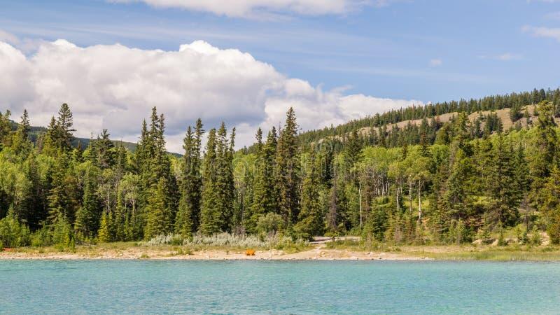 Montagna Patricia Lake Jasper National Park Alberta, Canada della piramide immagini stock