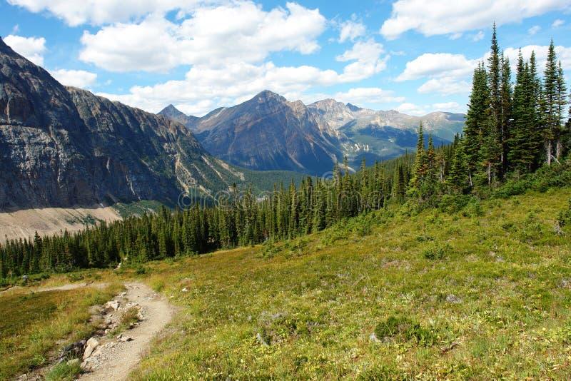 Montagna rocciosa e prato fotografie stock libere da diritti