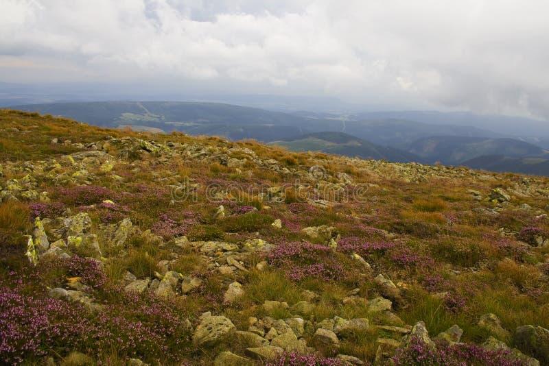 Montagna rocciosa sulla stagione primaverile fotografie stock