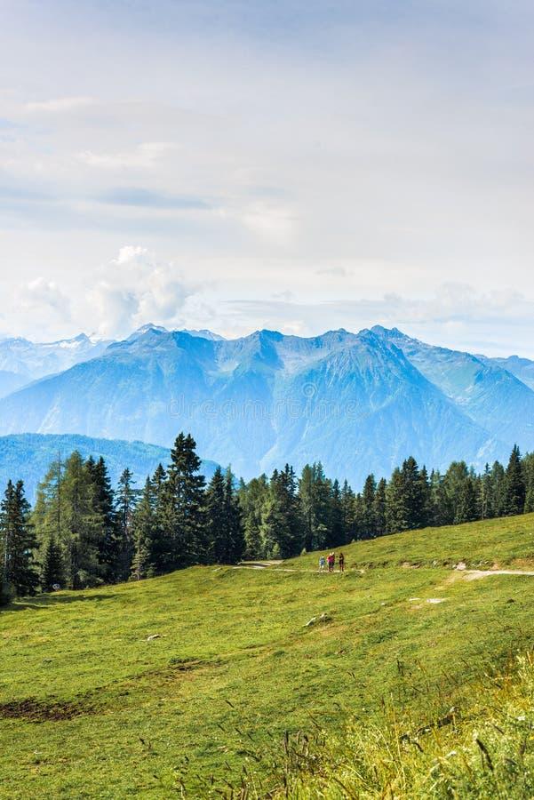 Download Montagna Stante Latente In Austria Immagine Stock - Immagine di aumento, europeo: 55355707