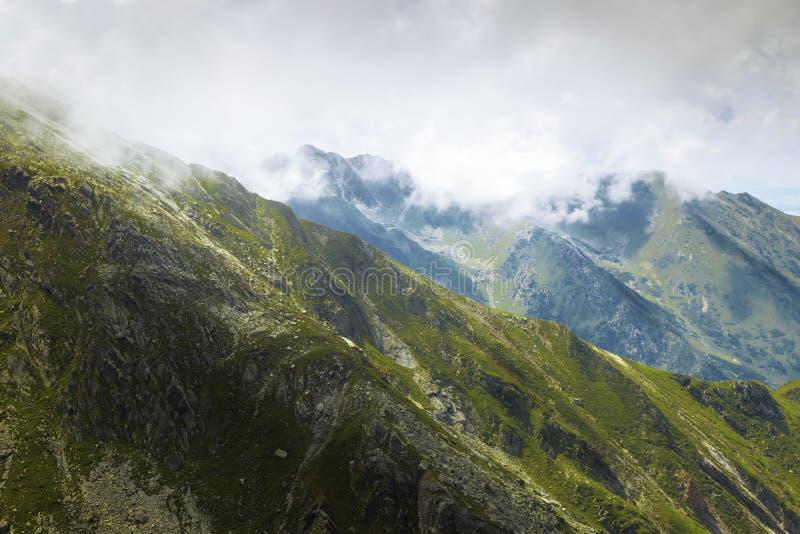 Montagna verde con la nebbia immagine stock libera da diritti