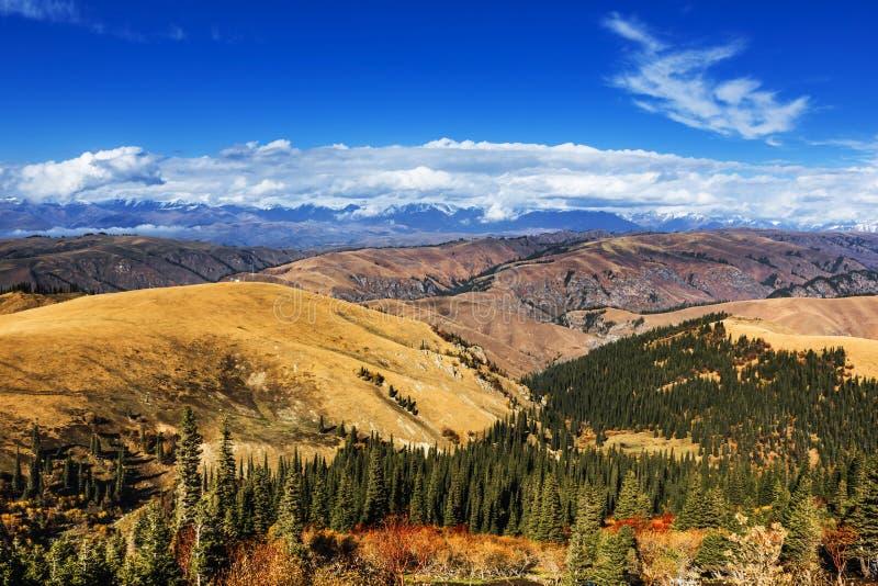 Montagna in Xinjiang, Cina di Tianshan fotografia stock